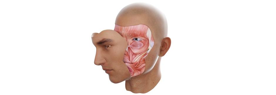 Das Gesicht aus dem 3D-Drucker